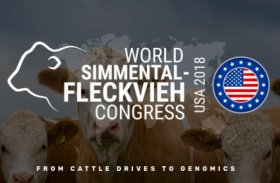 Photos from the WSFF Congress in Texas, USA