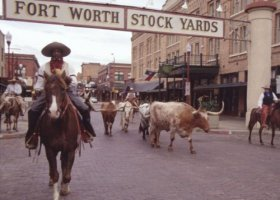The World Simmental-Fleckvieh Federation Congress will be held in Ft. Worth, Texas, USA at the Historic Stockyards